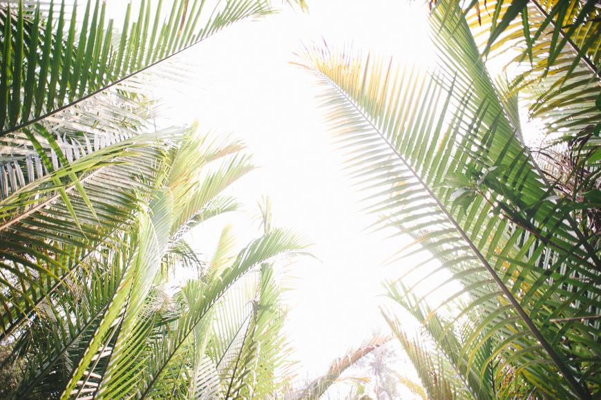 Vietnam_Travel_Tips_-3